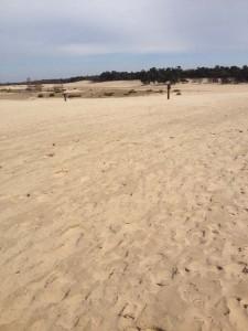 duinen2